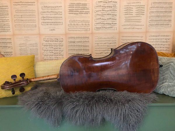 Boheemse Cello-Scarlett Arts1