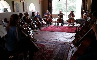 Celloweekend 2019 te Havelte op 17 en 18 augustus!