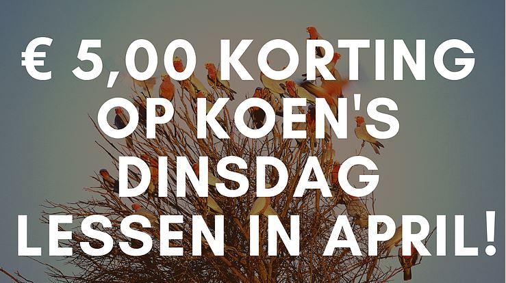 Nieuw! Dinsdagmiddag celloles in Amsterdam door Koen: € 5,00 korting in april
