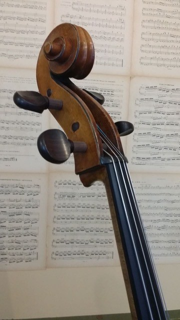 Mirecourt cello 4900,00 Scarlett Arts a