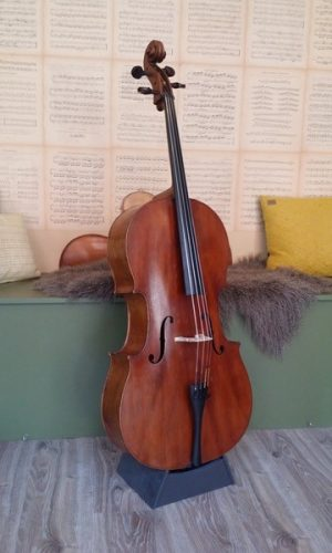 Cello Pernoud, Haute Savoie g