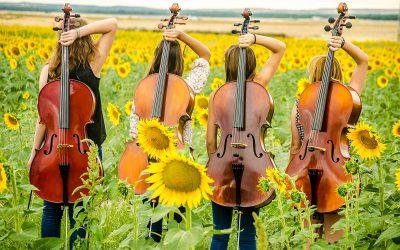 Lente = cello!
