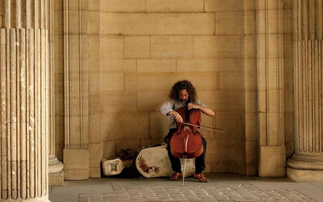 De Watson kopie strijkstok voor je cello?