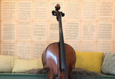 Cello workshops 2019-2020 inschrijving geopend