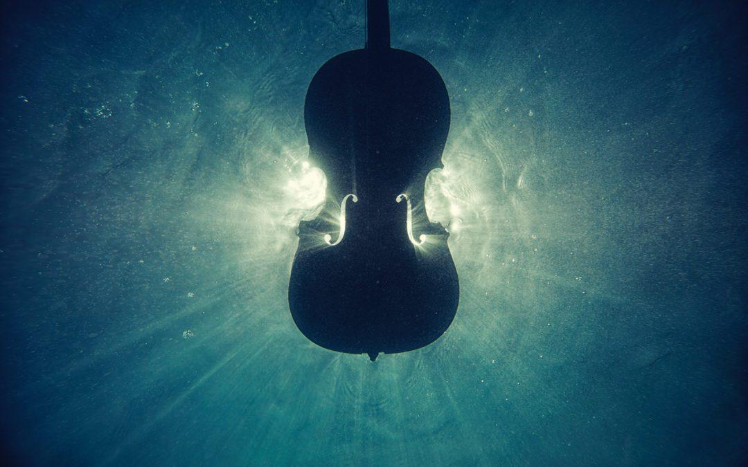Vijf goals voor komend cello jaar