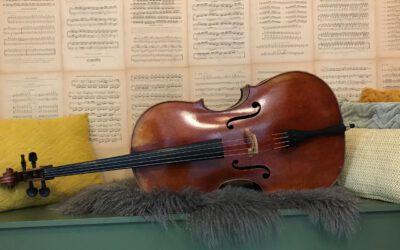 10 Cellowerken die je echt wilt kennen!