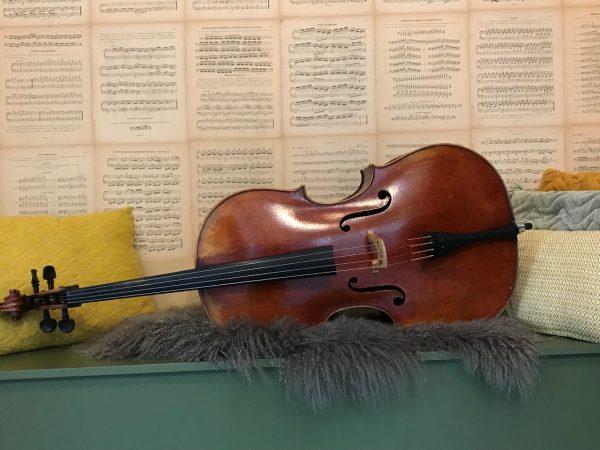 7-8 Cello uit 2008 Jay Haide- Scarlett Arts-5