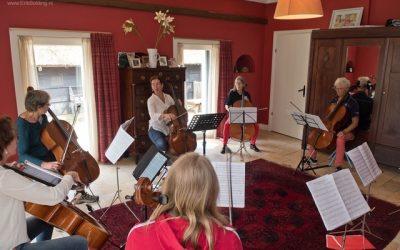Doe mee aan het Celloweekend van 25 en 26 juli te Havelte, Drenthe.