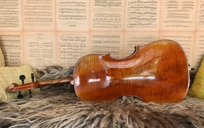 Nieuw in de cello studio Belgische 7/8e cello, ** kwaliteit