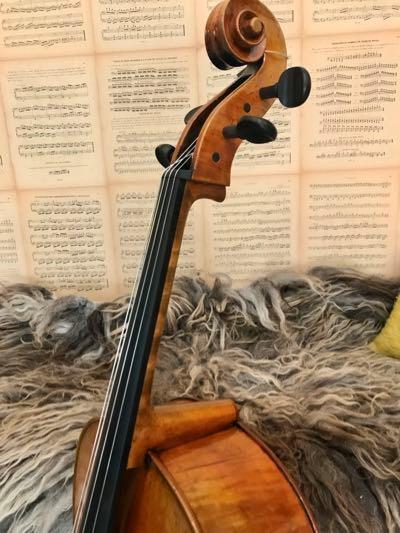 Belgische-cello-ScarlettArts4